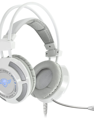 MIC-EH70WT-A5 copie